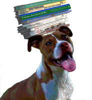 books and hound
