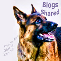 Web Canine and Blog Connections