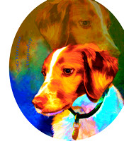 Brittany Dog Art w